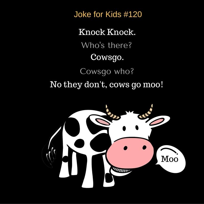 Cows#120
