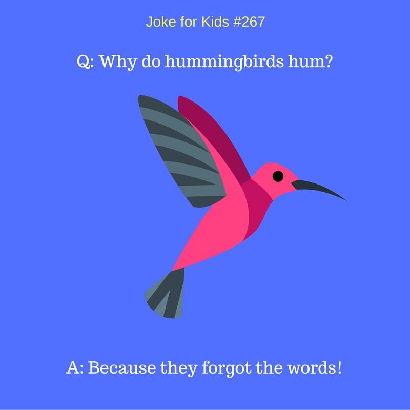 Hummingbird #267_singleuse