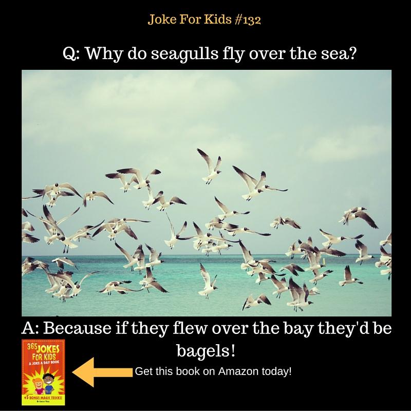 Seagulls#132