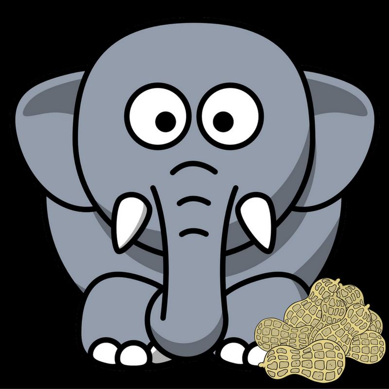 274_ElephantPeanuts_singleuse