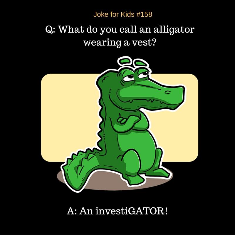 Alligator #158